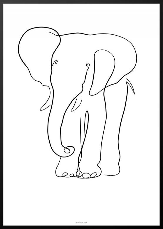 Stregtegning elefant plakat
